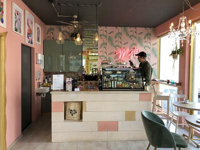 Kattakaffihúsið cat cafe in Reykjavik