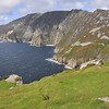 Silver League - the highest sea cliffs in Europe - on the Donegal peninsula.