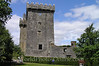 Cork - Blarney Castle 1