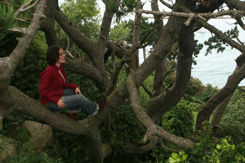Terri in a tree by the sea, Dalkey