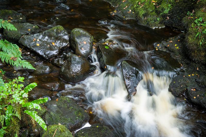 Creek near Cranny Falls, Antrim Coast