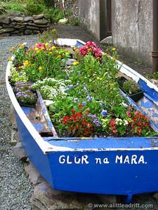 Irish Streets and Flowers