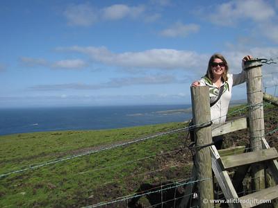 Navigating the Irish Cow pastures