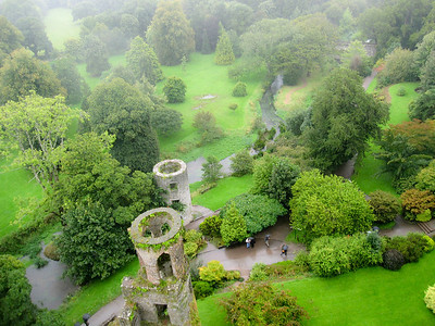 The lush green grounds of Blarney Castle in Cork, Ireland.
