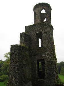 Part of Blarney Castle