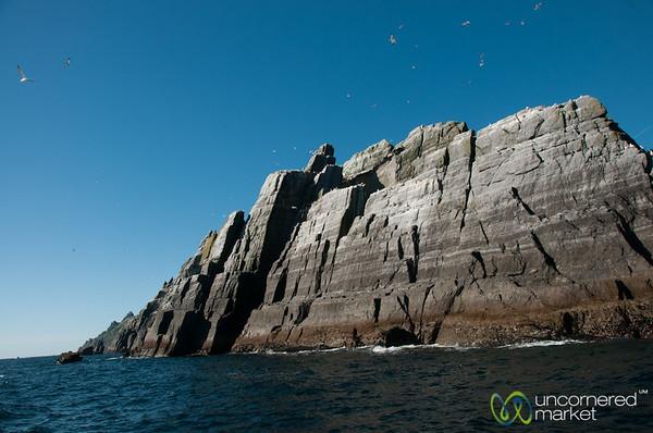 Smaller Skellig, Bird Sanctuary - Ireland
