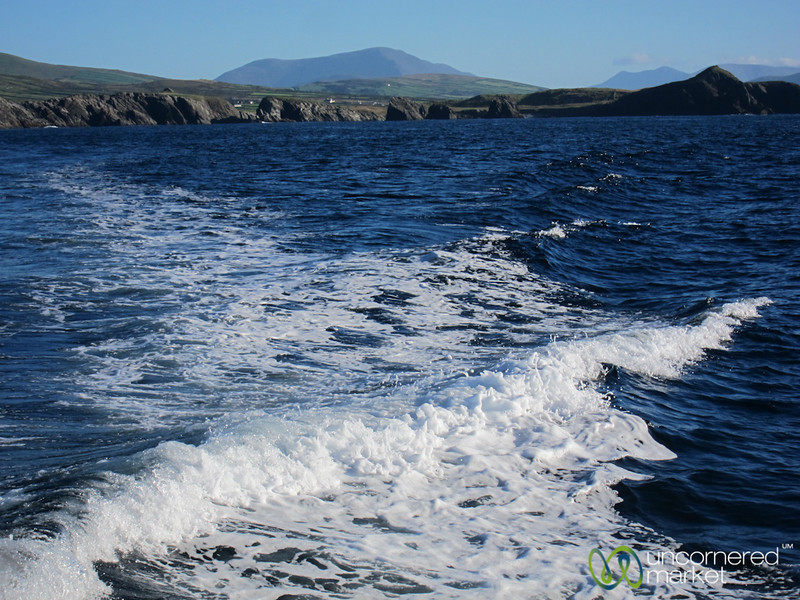 Boat Ride out to Skellig Rocks from Portmagee - Ireland