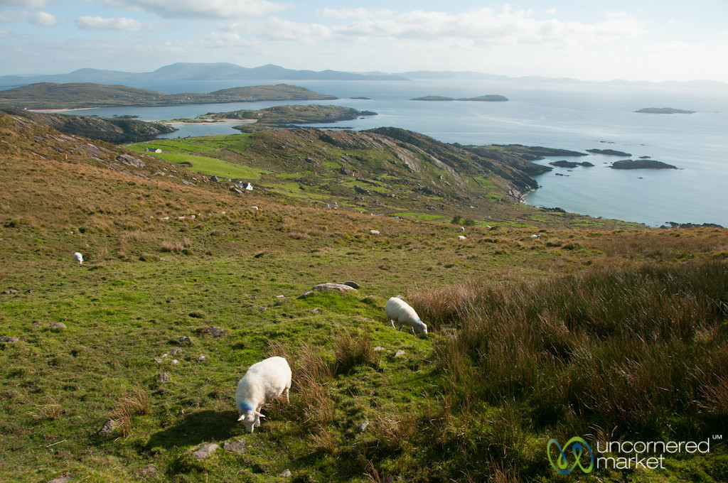 Ring of Kerry (East) Landscapes - Ireland