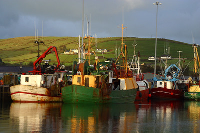 a wee bit of coast:  ring of kerry and dingle peninsula