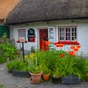 Thatched-roof cottages of Adare