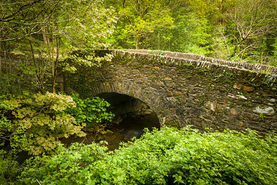 Creeks and rivers are everywhere in Ireland, which means lots of stone bridges.  These are rarely wider than a single car, so approaching one takes some care and patience.  We never saw road rage in Ireland.