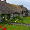 Thatched cottages of Adare