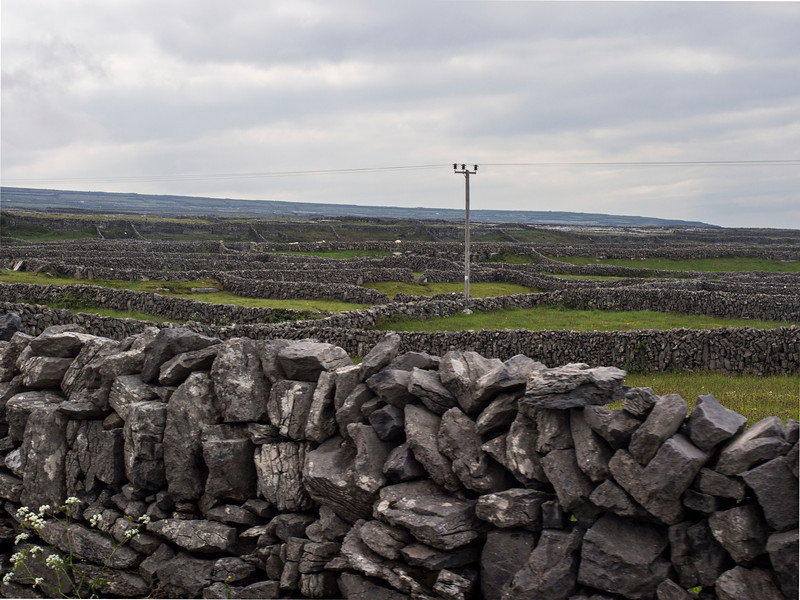 Inishmore, Aran Islands.  Cromwell drove the Irish to this unhospitable place.  They had to clear rocks and haul seaweed up the cllffs to make soil.
