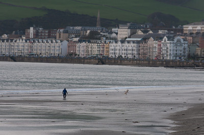 Local playing with dog on the shore in Isle of Man