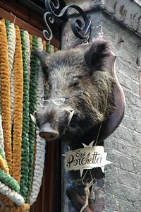 A myopic boar