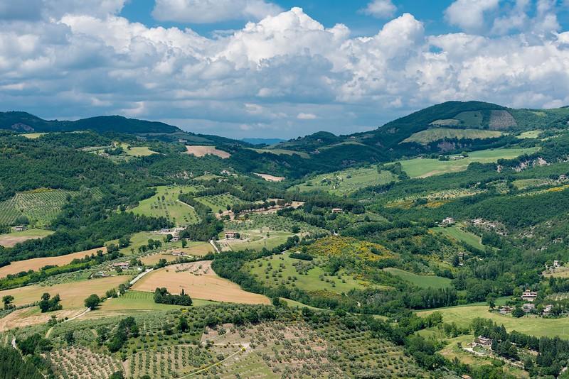 Umbria Hills.