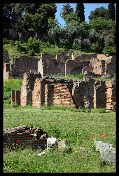 Next to the Colosseum there is many old ruins.
