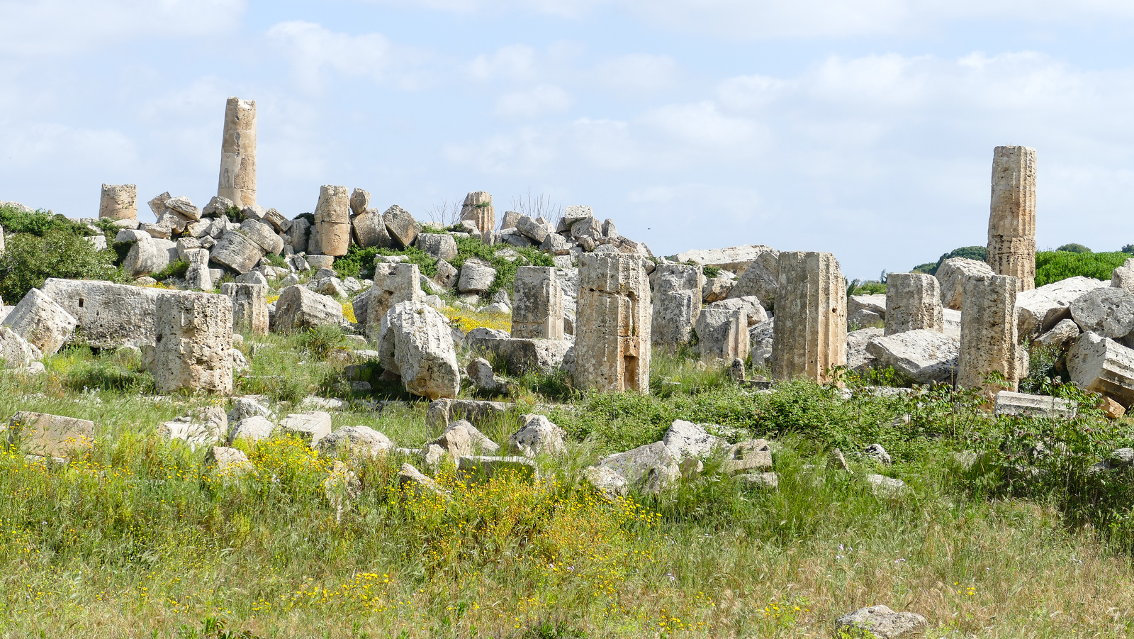 The temple ruins at Selinunte, Sicily.
