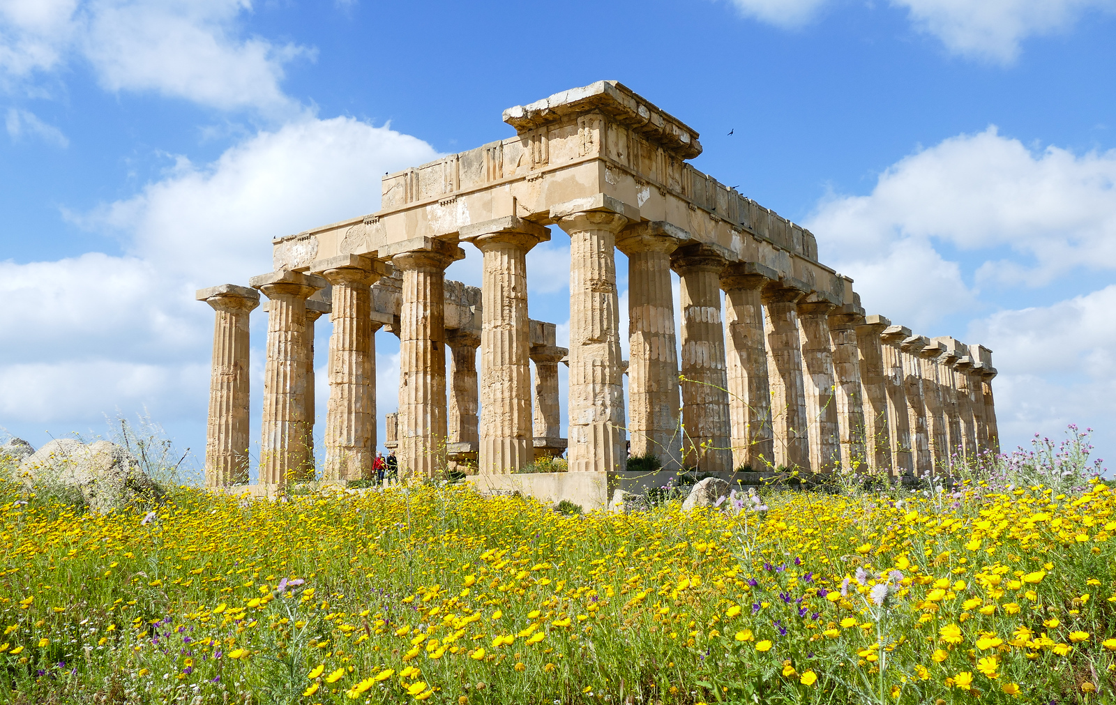 You'll discover the beautiful Temple C on a visit to Selinunte Archaeological Park on the west coast of Sicily. Explore it on a cruise excursion from Trapani.
