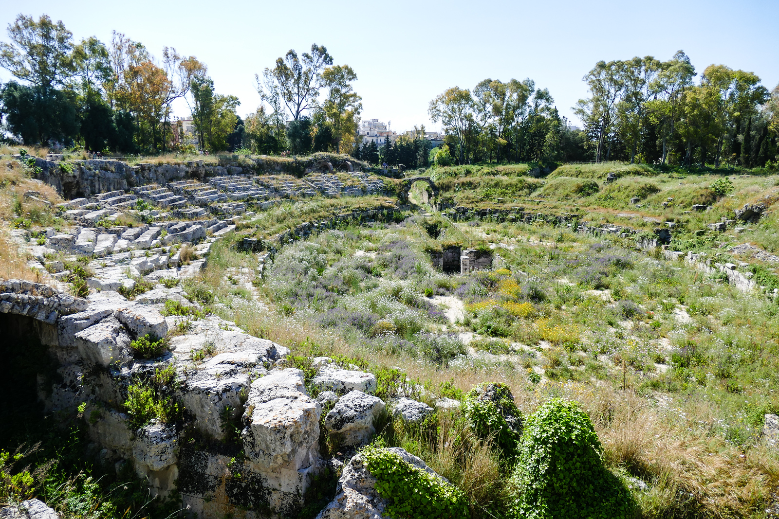 Trees and green shrubs surround the stone remains of the Roman coliseum in Syracuse, Sicily.
