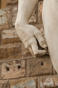 David in the Palazzo's Hand