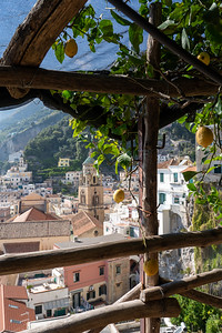 Lemon farm in Amalfi