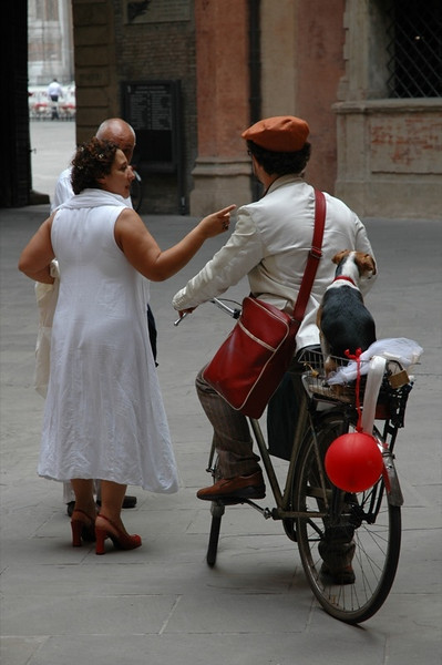 A Bride, a Groom, and His Dog - Bologna, Italy