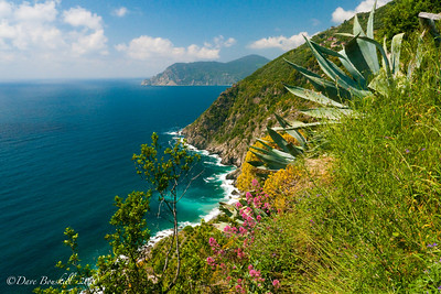 The route along the Mediterranean sea in the Cinque Terre Villages in Italy