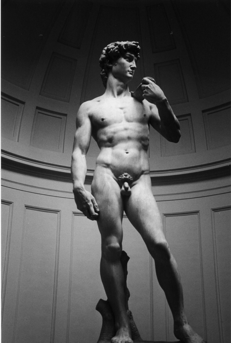 Michelangelo's David - Florence, Italy - Photo