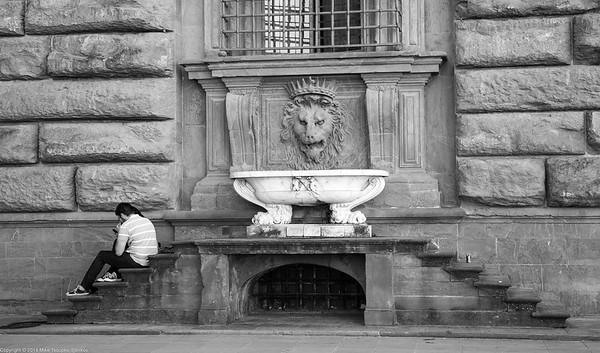 Florence - Palazzo Pitti