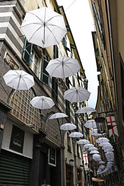 genoa umbrellas