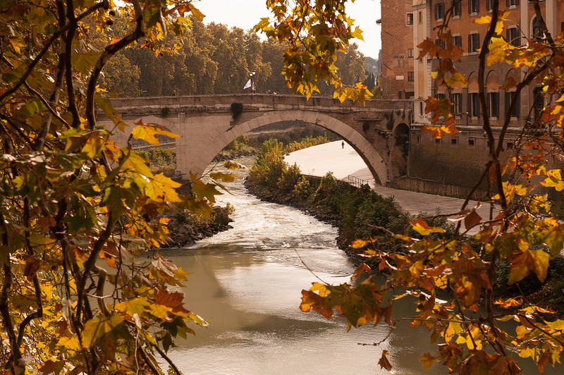 Morning on the Tiber River