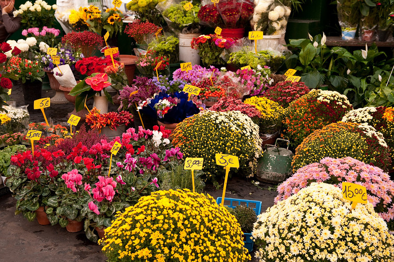 Flowers at the Market in Campo de' Fiori