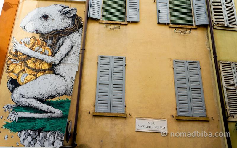 Ericailcane street art in Modena