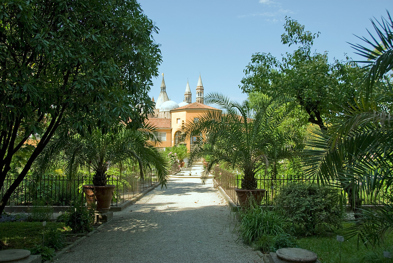 Pathwalk inside the Botanical Garden of Padua - Italy