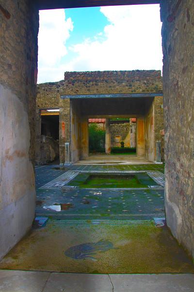 Italy, Ruins of Pompeii, Greyhound Mosaic