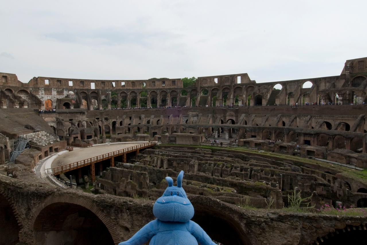 Skull inside the Colosseum in Rome, Italy