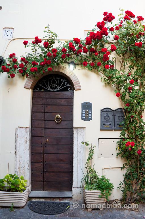 Doors & Roses in Rome