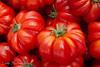 """Pomodori Casalino tomatoes, <a target=""""NEWWIN"""" href=""""http://en.wikipedia.org/wiki/Campo_dei_Fiori"""">Campo dei Fiori</a>, Roma"""
