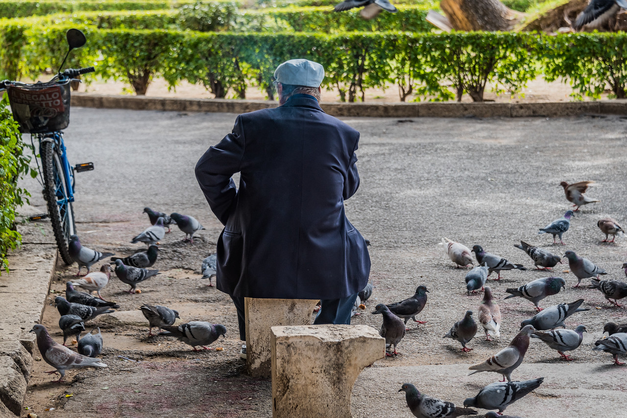 Palermo Park & Pigeons