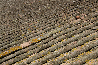 Row of bamboo planks in Siena, Italy