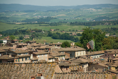 Rooftops and green fields in Siena, Italy