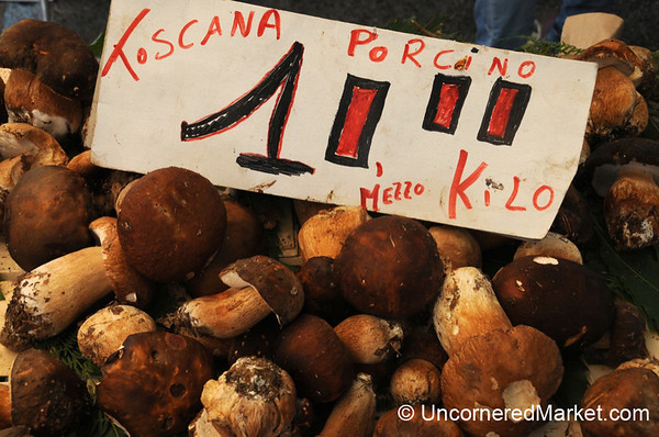 Porcini Season in Tuscany