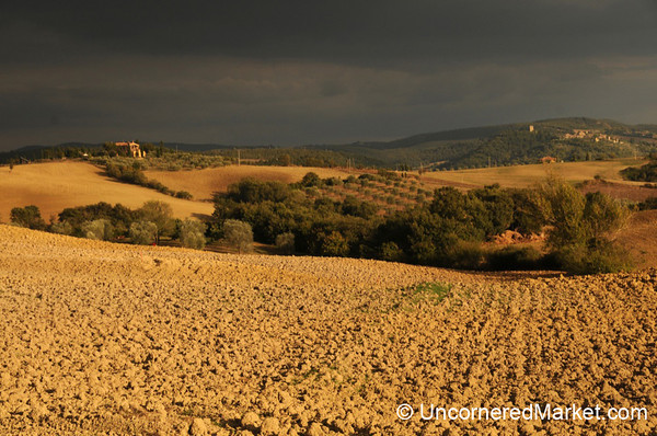 Val d'Orcia in Late Afternoon - Tuscany, Italy