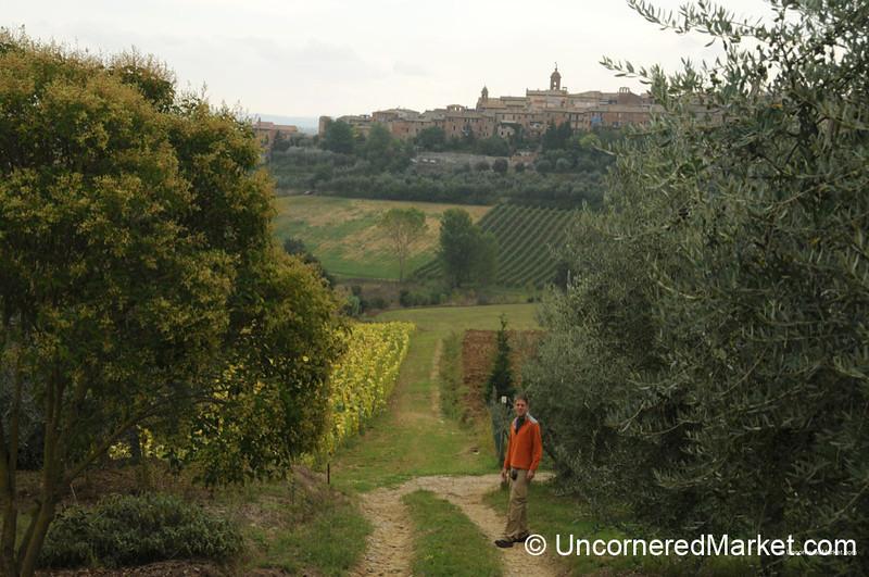 Looking Up at Torrita di Siena - Tuscany, Italy