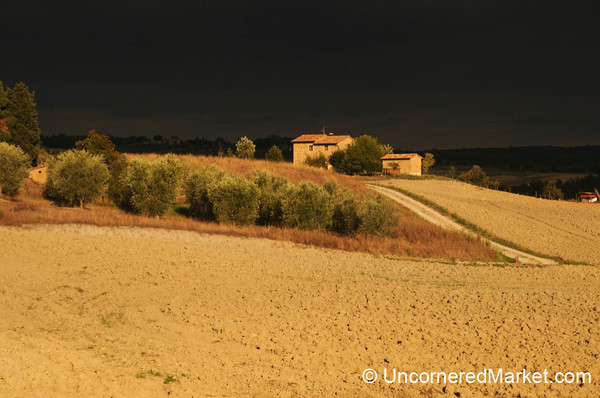 Tuscan Countryside in Late Afternoon - Val d'Orcia, Italy