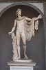Vatican Museum - Apollo Belvedere