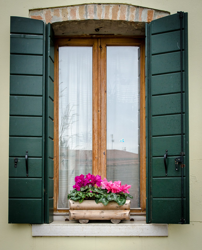 Window with flowers, Venice.