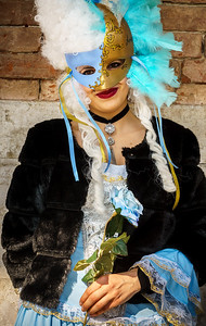 Nice young lady with fancy carnival costume.