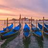 Morning At Venice